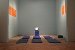 Sala de Exercícios, 2015, Instalação, Dimensões variadas, Participação: Janaina Carrer.